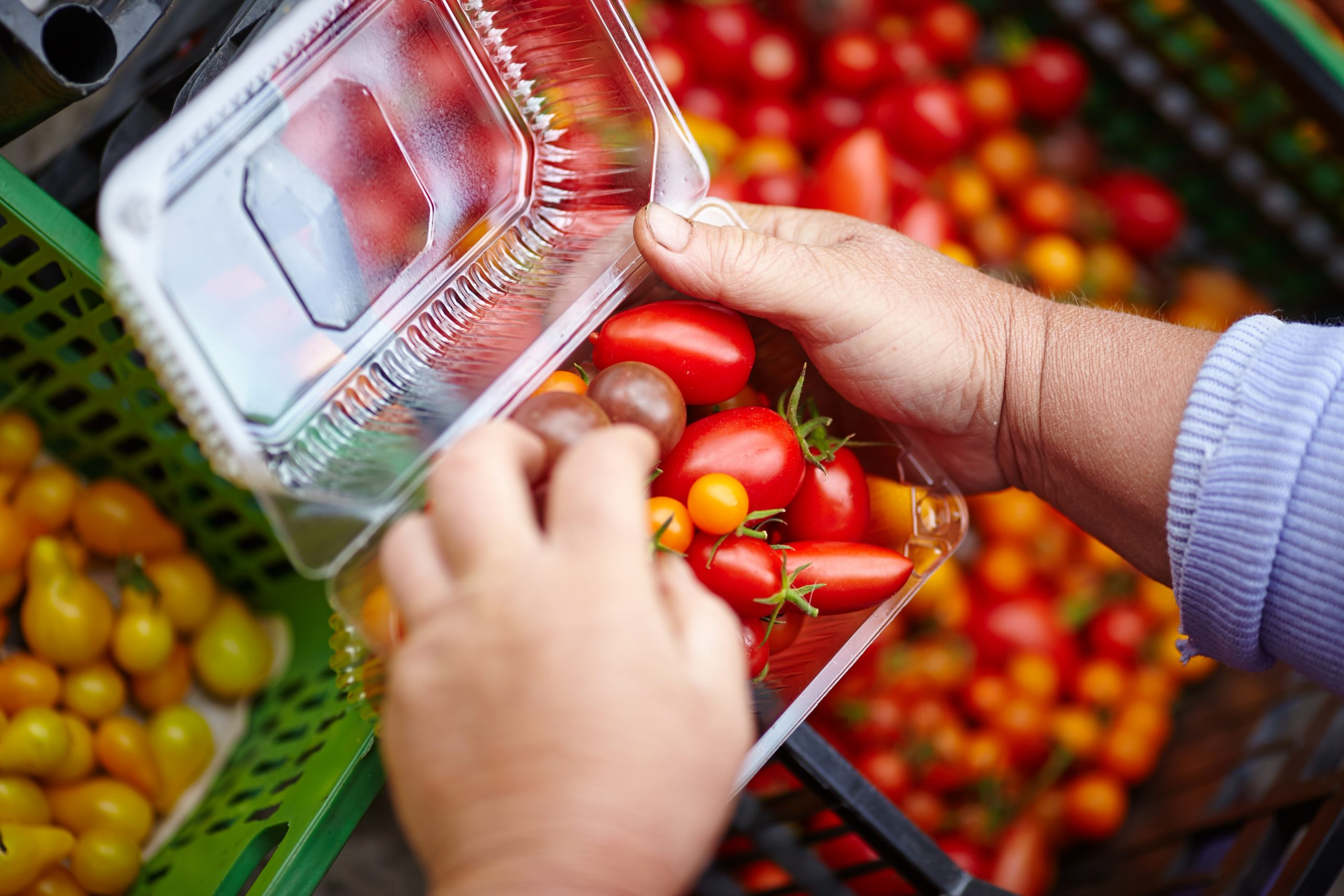 Edible Food Packaging will Prevent Waste in the Future